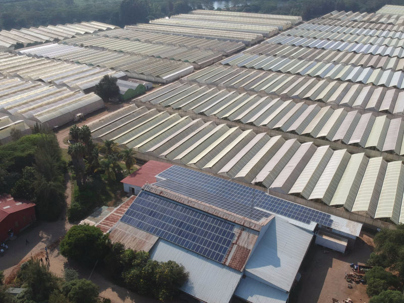 175 kW grid-tied | 5 days, Waridi & Fresh Catch, rose and fish farm, Kenya