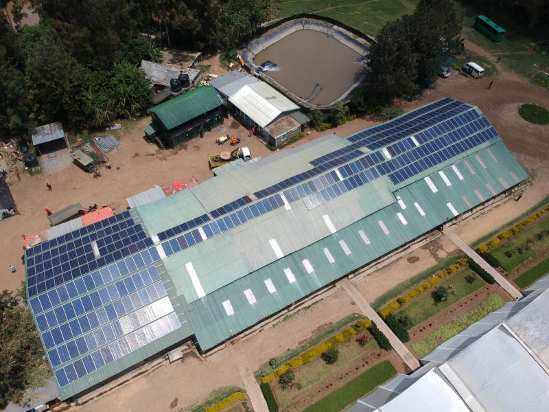 120 kW grid-tied | 2 days, Sun Floritech, flower farm, Kenya