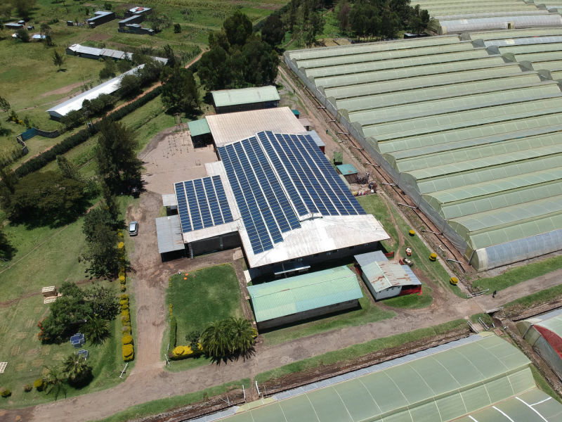 294 kW  grid-tied | 2 days, Eco Roses, flower farm, Kenya