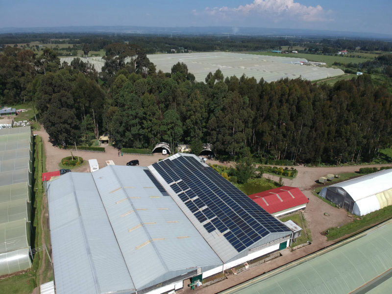 180 kW grid-tied | 2 days, Laurel, flower farm, Kenya