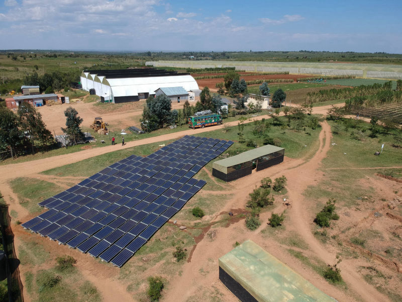 60 kW grid-tied | 1 day, Kubali, herb farm, Kenya