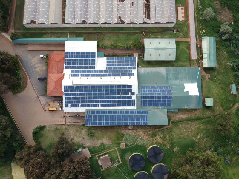 234 kW grid-tied | 3 days, Batian, flower farm, Kenya